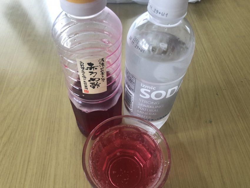 食欲がない、体調がよくない時に飲むとスッキリする飲み物。私はこれで助けられてます!